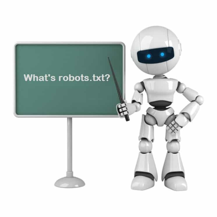 What is a robots.txt file and how to use it