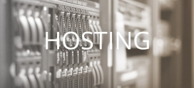 What is the Difference between Linux and Windows Hosting?